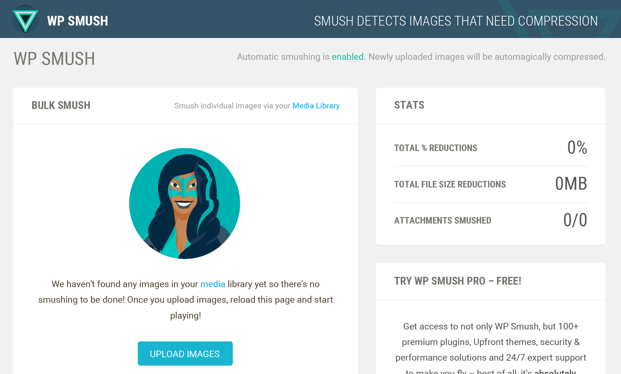Smush Images for WordPress Website