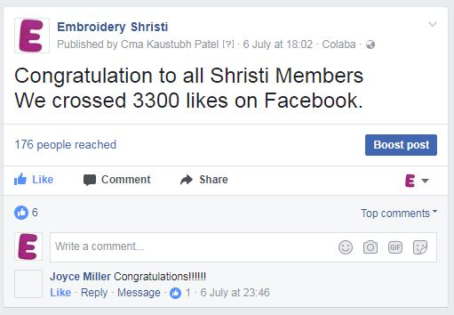 Embroideryshristi Facebook Page crossed 3000 likes