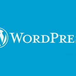 Significant Changes To Make Your WordPress Blog User and SEO Friendly
