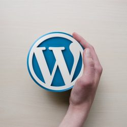 Tips for optimizing WordPress websites for improved SEO performance