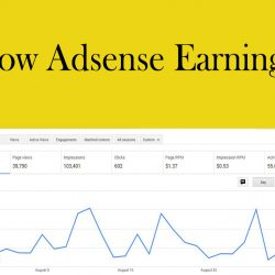 Low Adsense Earnings on Google Adsense Account