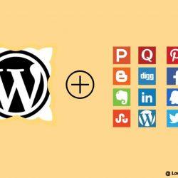 Best Free Social Media Plugins For WordPress